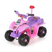 Lil Rider Four Wheel 6v Battery Powered Mini Atv, Battery Powered Kids Car