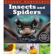 Insects and Spiders by Toby Reynolds