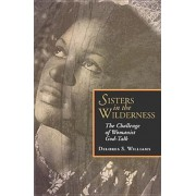 Sisters in the Wilderness: The Challenge of Womanist God-Talk, Paperback