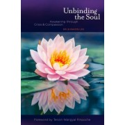 Unbinding the Soul by Dr B Raven Lee