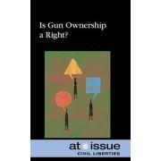 Is Gun Ownership a Right? by Lea Sakora