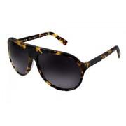 Diluca Eyewear Sunglasses Bellona Honey Tortoise TTS001