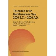 Tsunamis in the Mediterranean Sea 2000 B.C.-2000 A.D. by Sergey L. Soloviev
