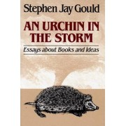 An Urchin in the Storm by Stephen Jay Gould