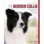 Border Collie Best of Breed by Judith Gregory