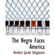 The Negro Faces America by Herbert Jacob Seligmann