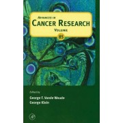 Advances in Cancer Research: Volume 94 by George F. Vande Woude
