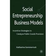 Social Entrepreneurship Business Models by Katharina Sommerrock