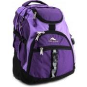 High Sierra Access Laptop Backpack(Black, Purple)