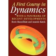 A First Course in Dynamics by Boris Hasselblatt