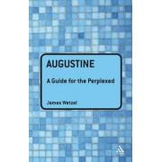 Augustine by James Wetzel