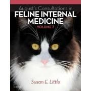 August's Consultations in Feline Internal Medicine: Volume 7 by Susan Little