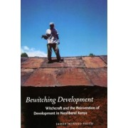 Bewitching Development by James Howard Smith