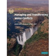Managing and Transforming Water Conflicts by Jerome Delli Priscoli