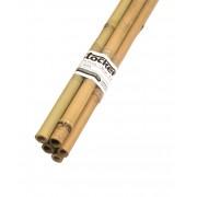 Tutori din bambus 14 -16 mm (150 cm)