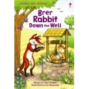 Brer Rabbit Down the Well by Louie Stowell