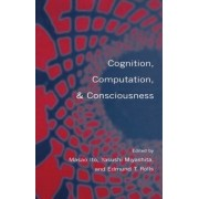 Cognition, Computation and Consciousness by Masao Ito