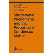 Shock-wave Phenomena and the Properties of Condensed Matter by Gennady I. Kanel