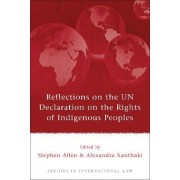 Reflections on the UN Declaration on the Rights of Indigenous Peoples by Stephen Allen