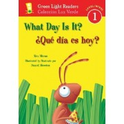 What Day Is It?/Que Dia Es Hoy? by Alex Moran