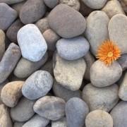 Pebble Natura 2-4 cm KG