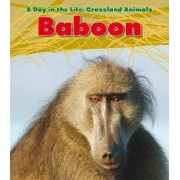 Baboon by Louise Spilsbury