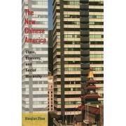 The New Chinese America by Xiaojian Zhao