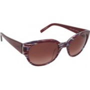 Esprit Spectacle Sunglasses(Brown)