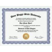 Dune Buggy Dune Buggies Degree: Custom Gag Diploma Doctorate Certificate (Funny Customized Joke Gift - Novelty Item)