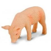 Collecta - Piglet Feeding 88346