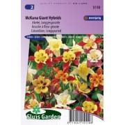 Aquilegia x cultorum - McKana Giant Hybrids zaad bloemzaden