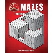 3D Mazes: Optical Illusions