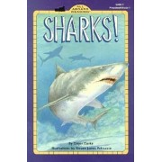 Sharks by Ginjer Clarke