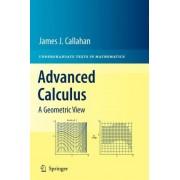 Advanced Calculus by James Callahan