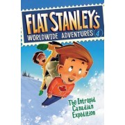 Flat Stanley's Worldwide Adventures, Book 4 by Jeff Brown