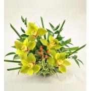 Aranjament cu orhidee verzi