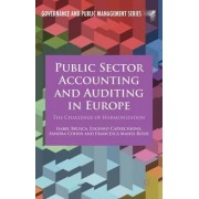 Public Sector Accounting and Auditing in Europe by Isabel Brusca