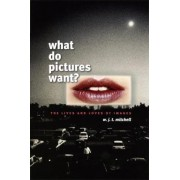 What Do Pictures Want? by W. J. T. Mitchell