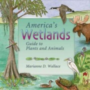 America's Wetlands by Marianne D Wallace