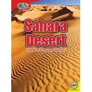 Sahara Desert by Megan Lappi