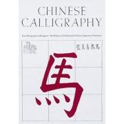 Chinese Calligraphy by Edoardo Fazzioli
