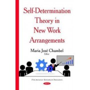 Self-Determination Theory in New Work Arrangements by Maria Jos