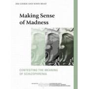 Making Sense of Madness by Jim Geekie