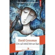 Un Cal Intra Intr-un Bar - David Grossman