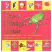 Kepes ifjusagi szotar Dictionar vizual pentru cei mici