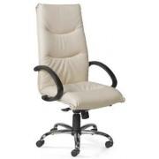 Cadeiras de Escritório Executivas Com Braços e Rodas Direcção Viena-A