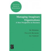 Managing Imaginary Organizations by Bo Hedberg