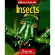 All About Australia: Insects by Australian Geographic