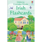 Usborne Everyday Words by Felicity Brooks