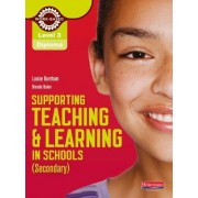Diploma Supporting Teaching and Learning in Schools, Secondary, Candidate Handbook: Level 3 by Louise Burnham